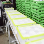 Biobest-inpak-hommels5